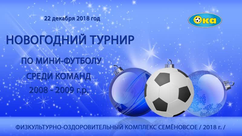 Новогодний турнир по мини-футболу среди команд 2008-2009г.р. с.Семёновское 22.12.18