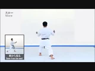 Saifa Kata & Bunkai