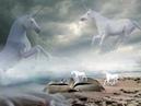 Hans Jur The Spirit of Unicorn