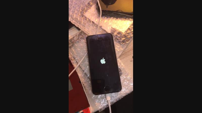 Красный экран iPhone 5s Курск