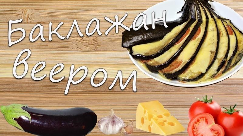 Баклажан веером в духовке. Жар-Птица рецепт баклажаны с сыром и помидорами, простой и вкусный