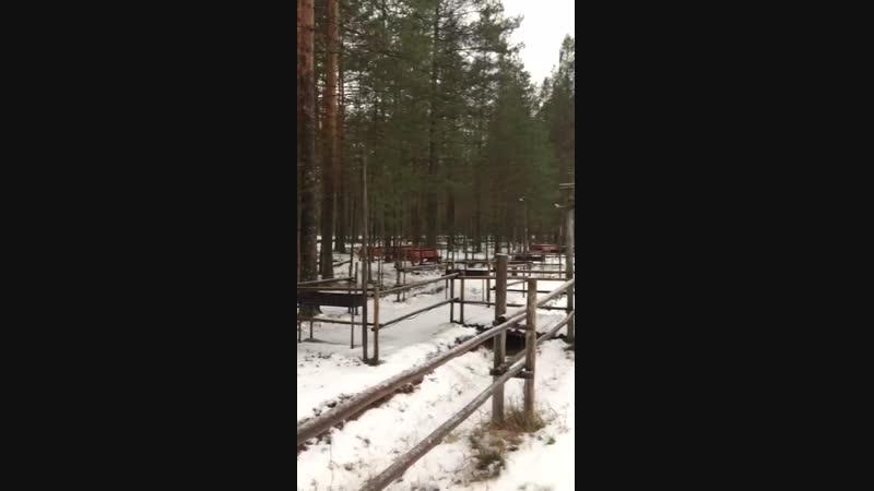 Финская калевала