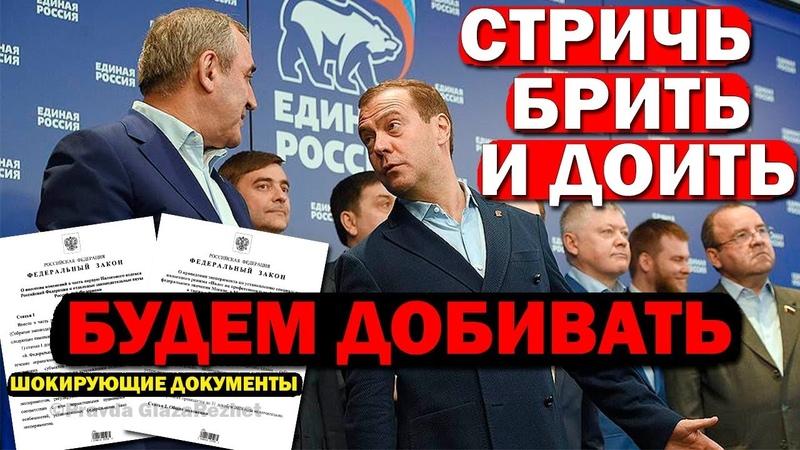 Под видом налога на самозанятых, устанавливают налоги на любые доходы физлиц   Pravda GlazaRezhet
