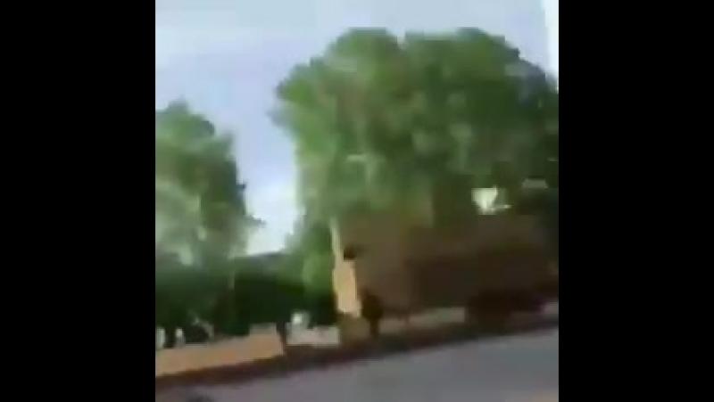 Cette vidéo a été postée par la racaille ayant fait un délit de fuite