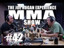JRE MMA Show 42 with Teddy Atlas