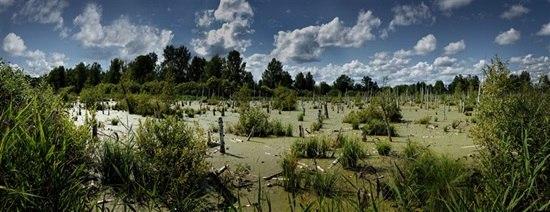 Чёртово болото Одно из паранормальных мест России - это «Чертово болото», находящееся недалеко от уральского города Миасс. И если даже на карте это место никак не обозначено, такое название эта