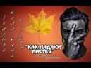 А. Макаренко Как падают листья (Золотая коллекция поэзии)