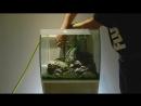 Пошаговое оформление аквариума Fluval Flex