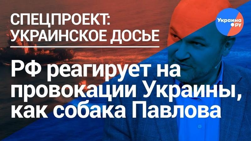 Обозреватель «Коммерсанта»: Мы идем в ловушку, которую для нас расставила Украина