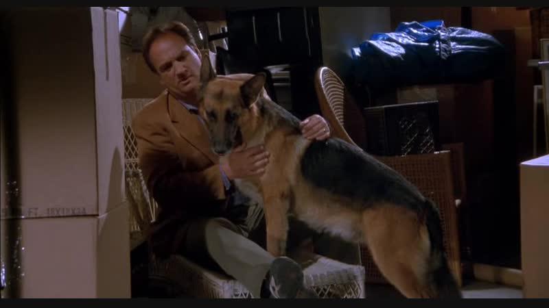 K-9 , собачья работа ) часть 2-я.1999 год