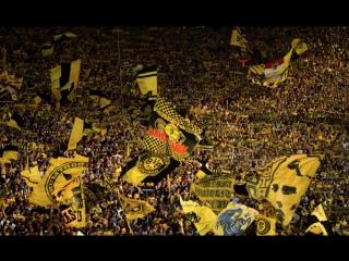для болельщиков Borussia 09 e. V. Dortmund