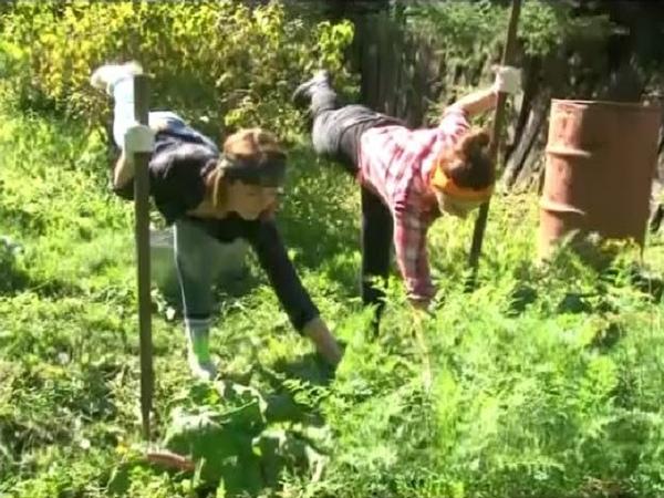 Агрофитнес копаем картошку и собираем морковку с пользой для здоровья