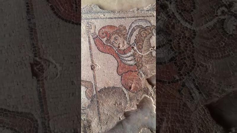 Сейфора Циппори 13 Амазонки всадницы в скифских шапочках