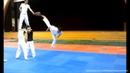 Taekwondo 540 Kick 540도 뒤후려차기 Cú đá 540 trong Taekwondo
