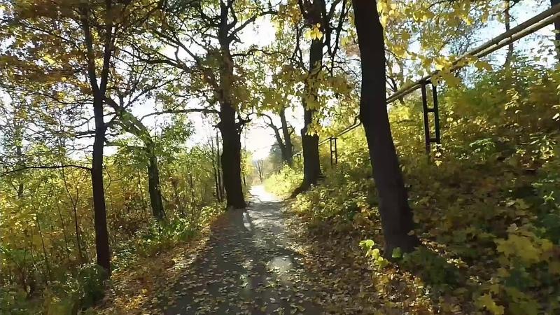 Прогулка по осенним аллеям и тропинкам