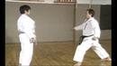 Karate Kihon Ippon Kumite 15 16