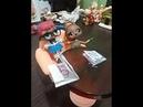 Куклы LOL в школе