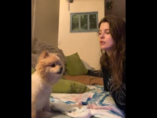 When you're dogger than your dog ️| amanda cerny