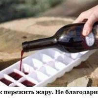 Анкета Ро Канунов