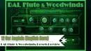 Virtual Cor Anglais (English Horn) VST VST3 Audio Unit. DAL Flute Woodwinds. EXS24 KONTAKT