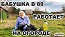 БАБУШКА ЗИНА РАБОТАЕТ НА ОГОРОДЕ В 89 ЛЕТ