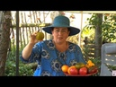 Германия: Штраф 25 000 евро, за выращивание овощей в огороде Часть 2