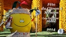 Fête du Citron à Menton.Menton Lemon Festival.France