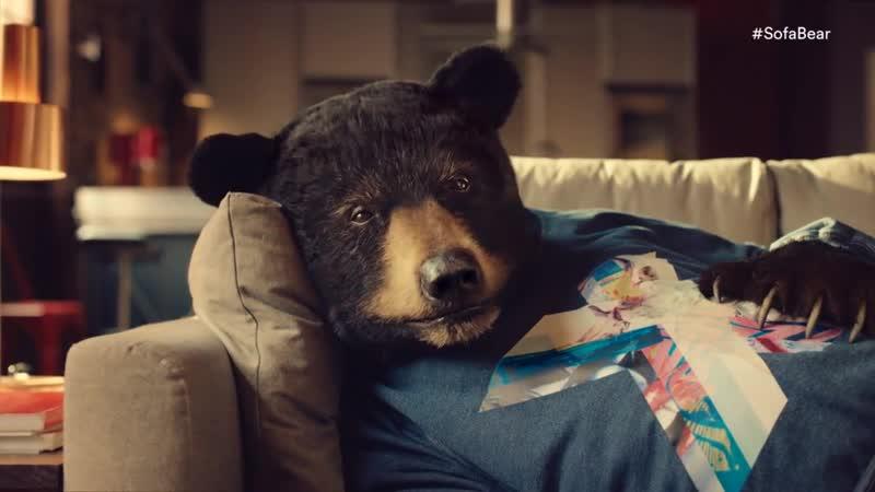 Introducing Sofa Bear – a fan of Virgin Media's Big Kahuna Movies Bundle