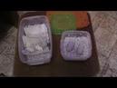 Эублефары Инкубация яиц Эублефаров с нового разведения 3
