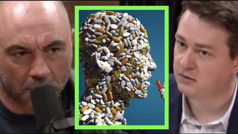 The Solution to the Opioid Crisis | Joe Rogan Johann Hari