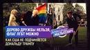 Дерево дружбы нельзя, флаг ЛГБТ можно. Как США не подчиняется Дональду Трампу (Александр Малькевич)