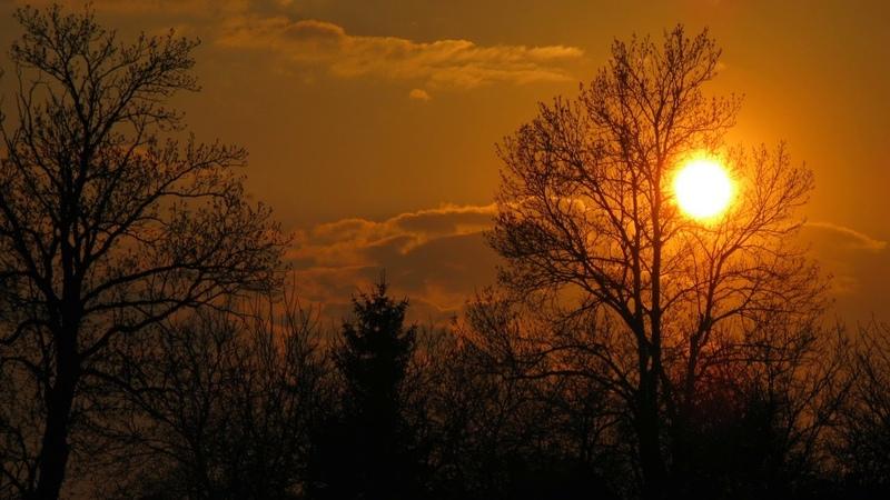 Картинка закат. Облака, солнце, деревья. Iwọoorun aworan. Awọn awọsanma, oorun, awọn igi