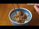 BRAIN EGG NATTO Bowl _ a brain-shaped egg stinky beans on rice