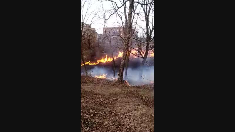 Берегите природу от огня!