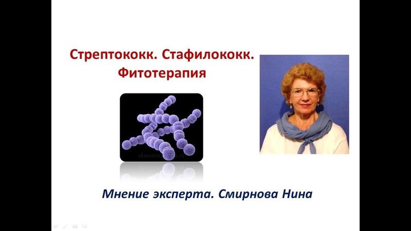 Стафилококки и стрептококки. Фитотерапия. Смирнова Нина NSP