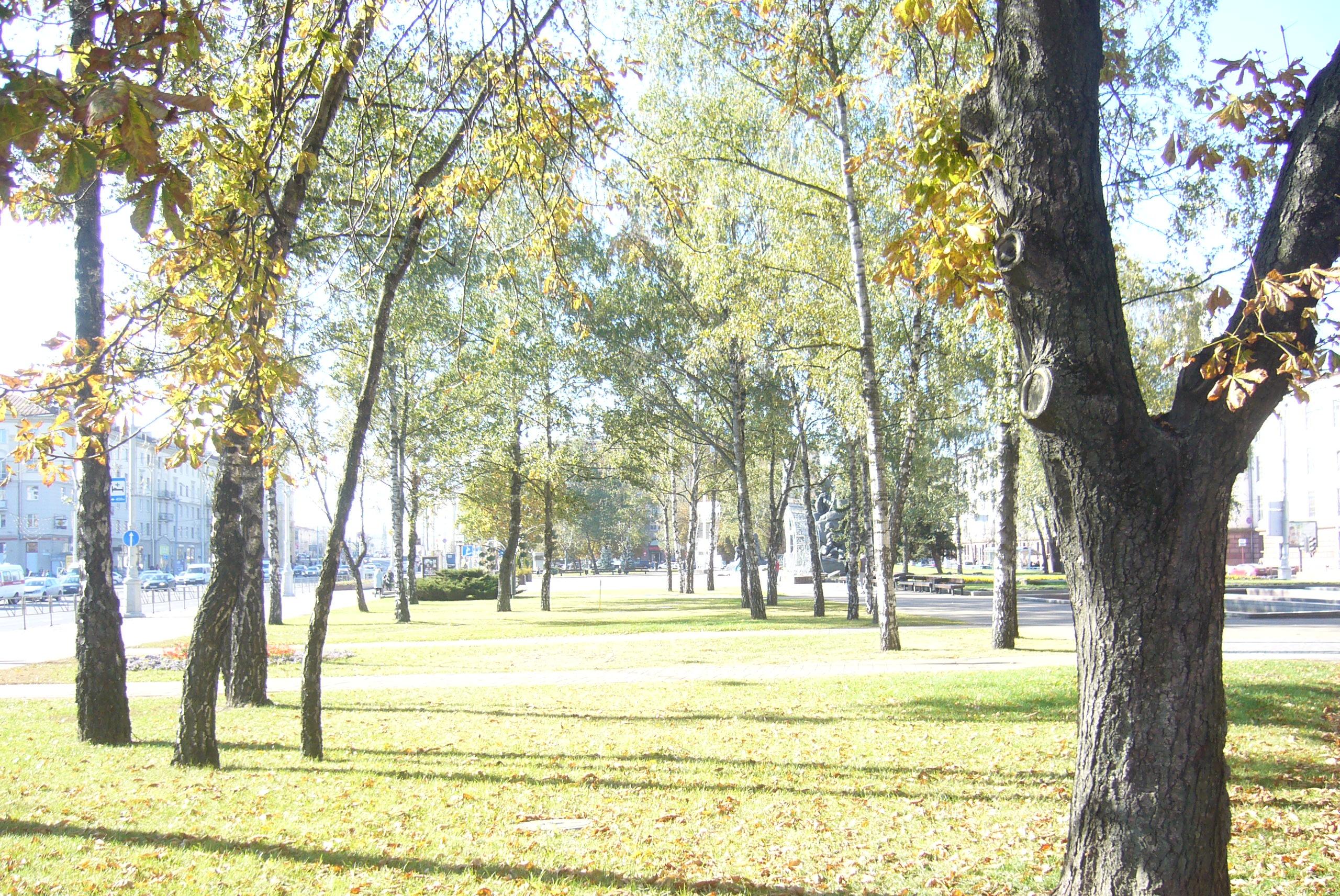 Осенне-летнее настроение в городе минск
