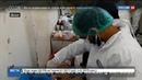Новости на Россия 24 • Очередной доклад о применении Асадом химического оружия оказался пустышкой без доказательств