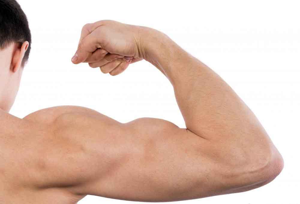 Фасоль содержит белок, который помогает построить сильные мышцы