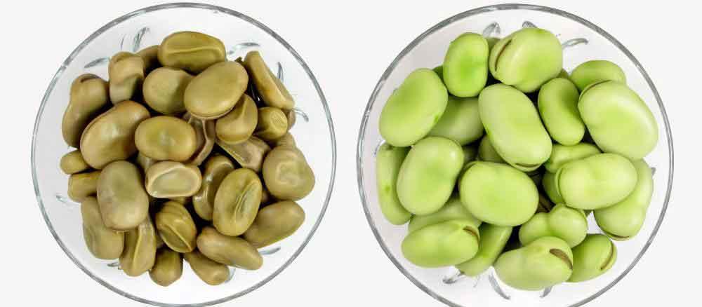 Бобы Fava содержат около 13 граммов белка на порцию