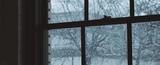 Snowy day in Iowa. #coub, #коуб