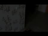 [Nepeta Страшилки] Страшилки ИГРУШКИ ОЖИЛИ Часть 2