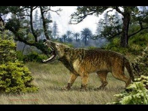 Доисторический мир. Древние животные. Саблезубый тигр. Документальный фильм National Geographic.