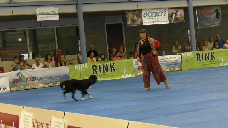 Dogdance World Championship. Final. Freestyle. Ludmila Eibogina and border collie Larry.