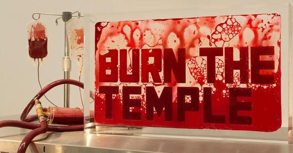 «Это как кровавое караоке»: Художник предложил посетителям сдать кровь для его инсталляции В бельгийском