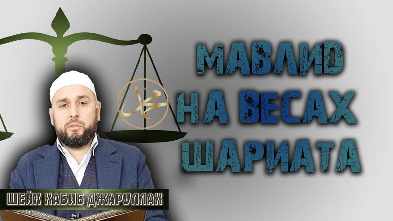 4k┇Мавлид допустим или нет┇Шариатская оценка┇ Шейх Хабиб Джаруллах