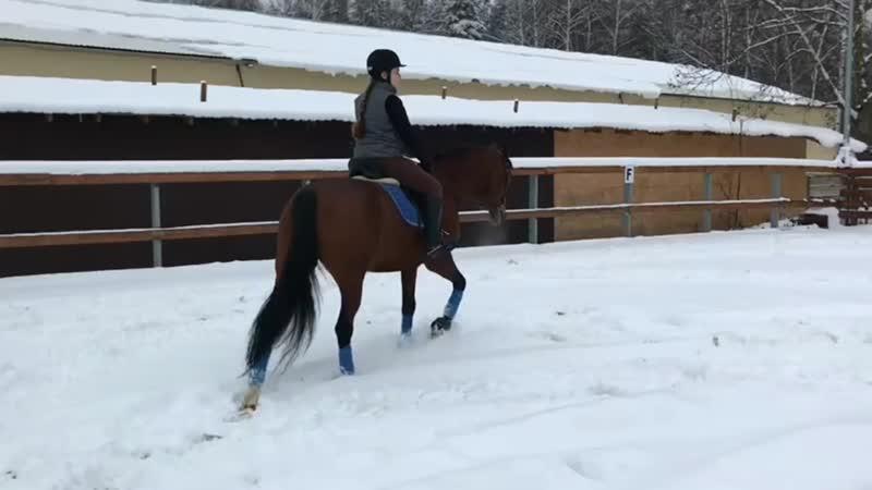•Зимний плац, тренировка с Гошей•