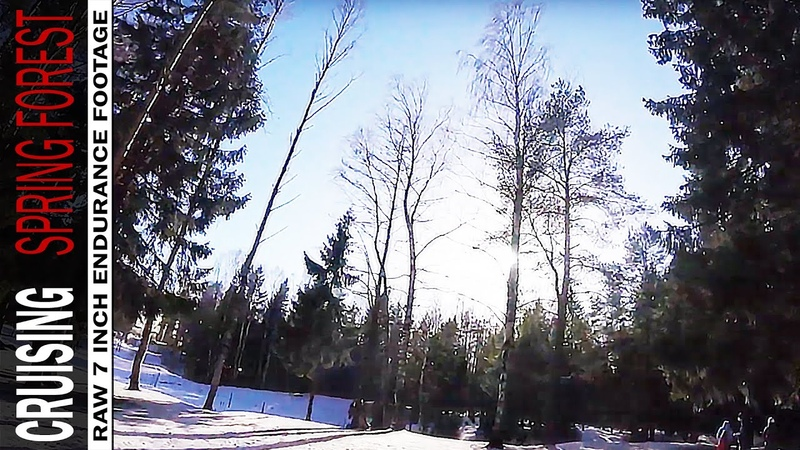 Cruising spring forest raw 7 inch endurance footage