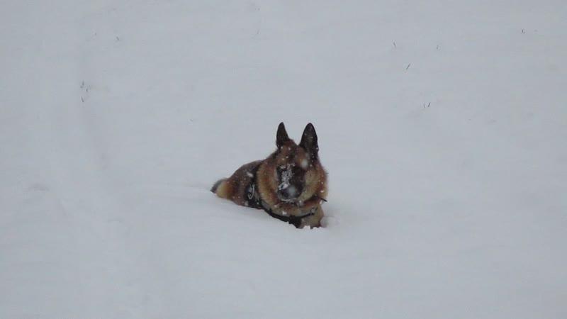 Динка на снежной перинке. MVI_0752