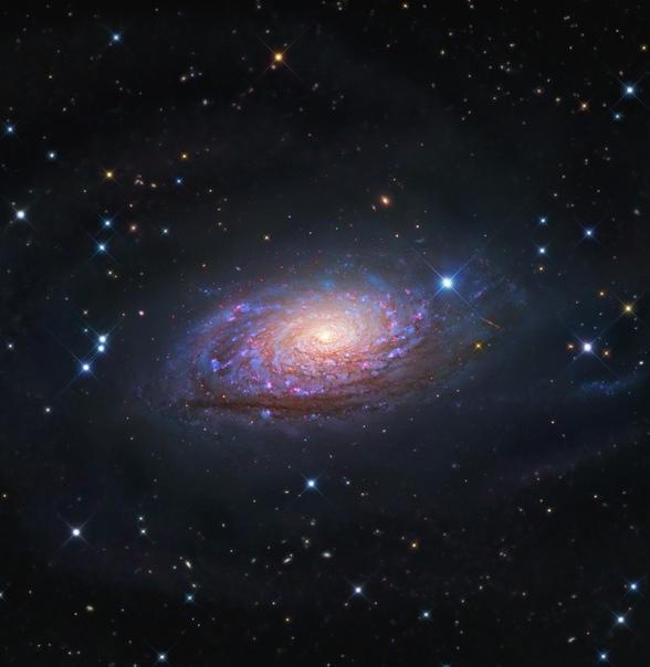 Галактика Подсолнух M63 или Ngc 5055 Это спиральная галактика на расстоянии 25 миллионов световых лет от нас, в созвездии Гончих псов.Фото: