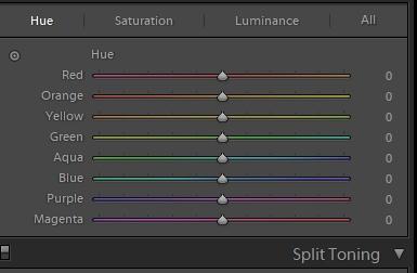 Выборочная работа с цветом в Adobe Lightroom